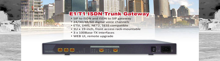 Digital VoIP Gateways   - PRI(E1/T1/J1)